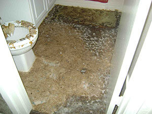 sewage damage san antonio