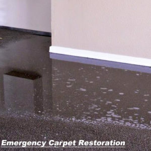 emergency carpet restoration san antonio