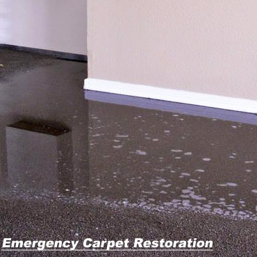 Emergency Carpet Restoration