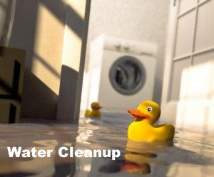 Water Cleanup San Antonio