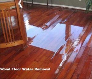 wood floor water removal